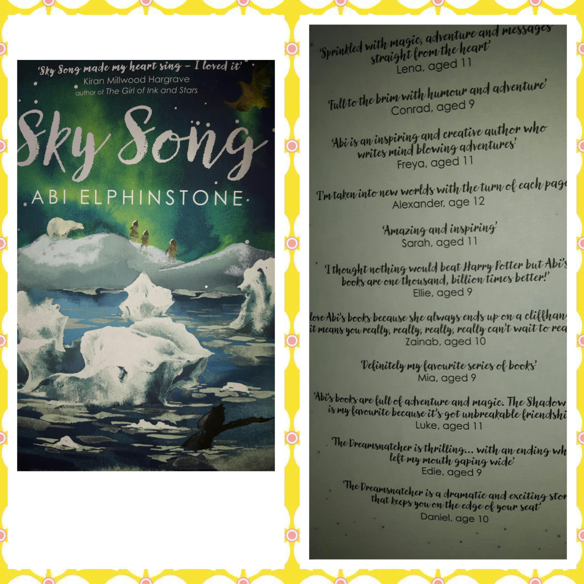 Sky Song Book Cover